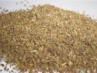 Basilikum, ab 10 g