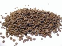 Moschuskörner, 10 g