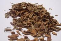Zimtrindenöl -Ceylon- (60/70%), ab 5 ml